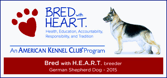 AKC Breeder of H.E.A.R.T.