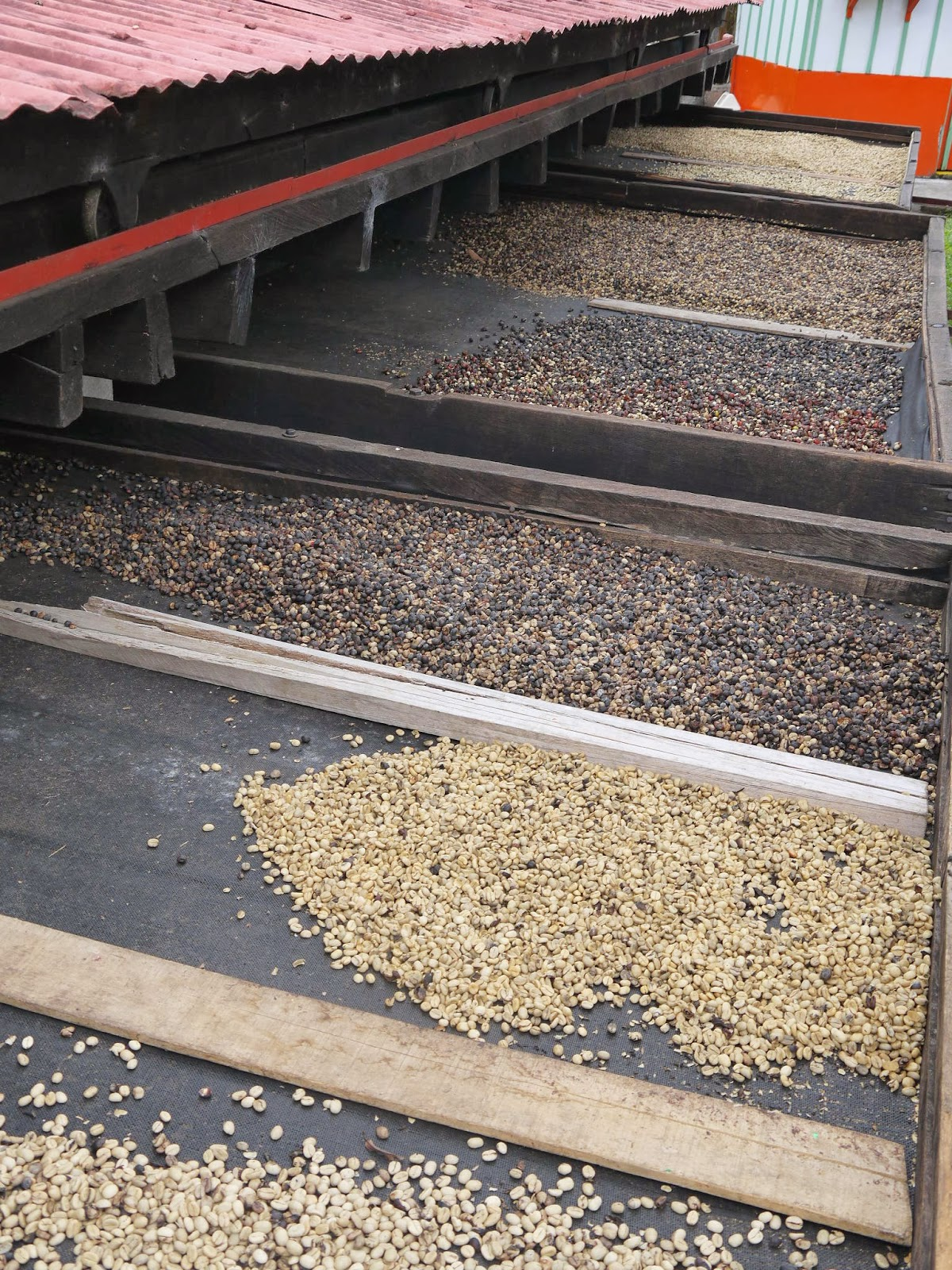Temps De Conservation Du Caf Ef Bf Bd En Grain
