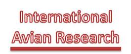International Avian Research