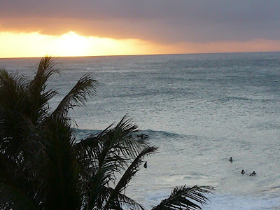 Turtle Bay surfers at sunset