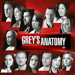 Greys Anatomy - A Anatomia de Grey  7ª Temporada Completa Séries Torrent Download capa
