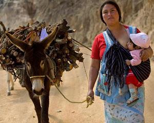 Pour Le Droit au Congé Maternel de La Femme Paysanne