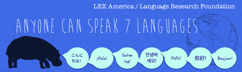 LEX Language Project