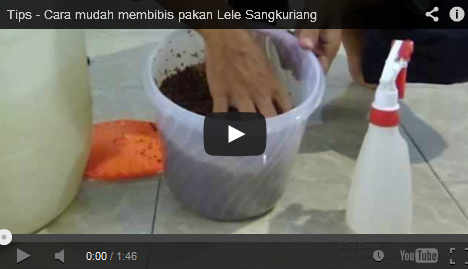 Video, Tips dan Trik, Tutorial, Bibis, Lele, Sangkuriang, Panduan