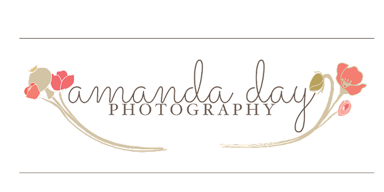 Amanda Day Photography