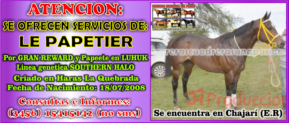 LE PAPETIER - SERVICIOS - 30.12.2014