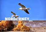 NORDERNEY 2014