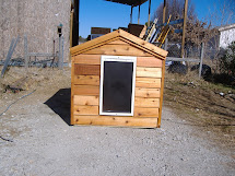 Large Heated Dog House