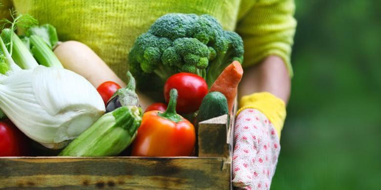 pola makan dan hidup sehat untuk menangkal kanker payudara