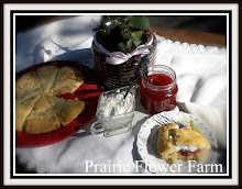 Coffeehouse Scones and Strawberry Rhubarb Jam