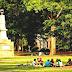 University Of South Carolina - University Of South Carolina Honors