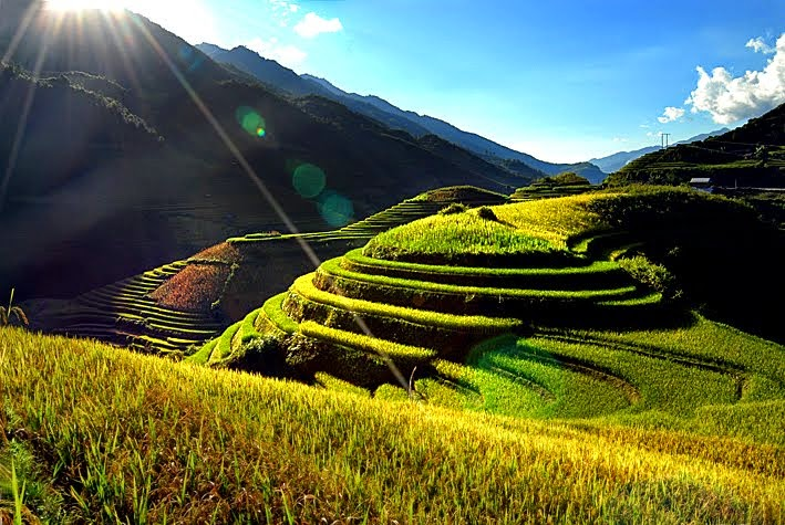 Vietnam Photo Albums