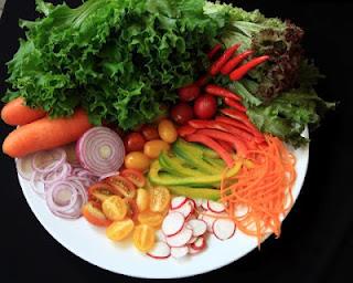 alimentação, Meu prato saudável, alimentos orgânicos, Movimento Novos Rurais, como montar um prato saudável, dica para montar um prato saudável,