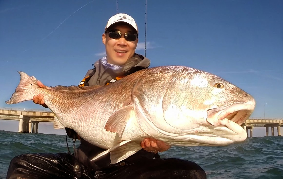 Angling addict big tournament red drum for Red drum fishing