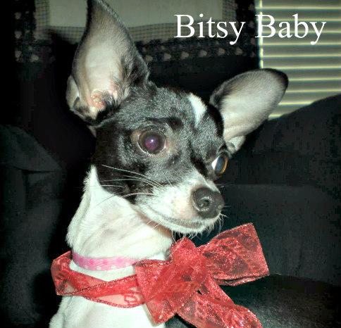 Bitsy Baby
