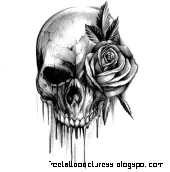 Tattoo Ideas on Pinterest  Skull Tattoos Skull Tattoo Design and