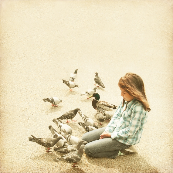 girl feeding doves and a duck