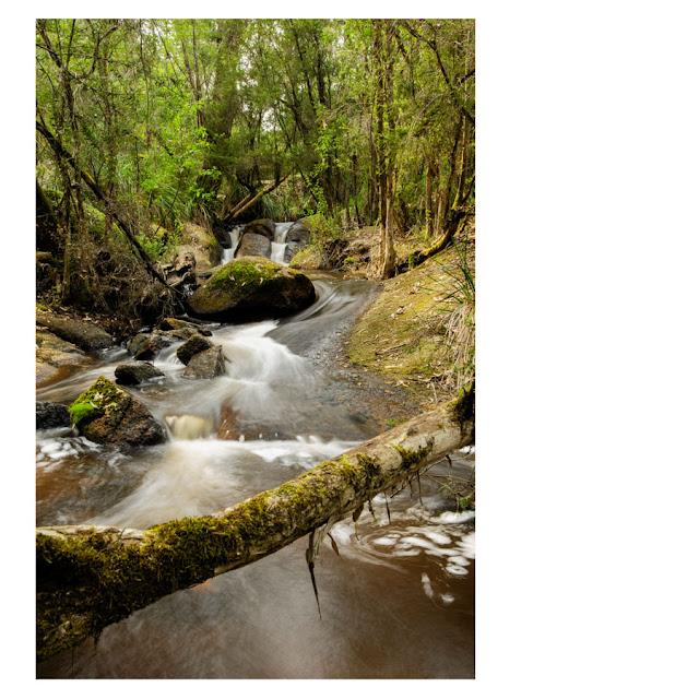 Tomahawk Creek, Kurth Kiln, Victoria.