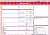 Blog-Planer von Nina Schwarz