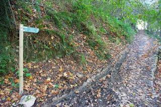 Cangas de Onís, ruta por la vega de Orandi, inicio