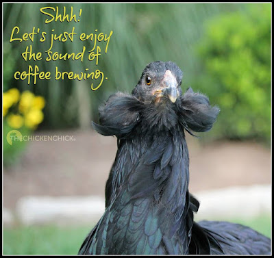 Shhh! Let's just enjoy the sound of coffee brewing.