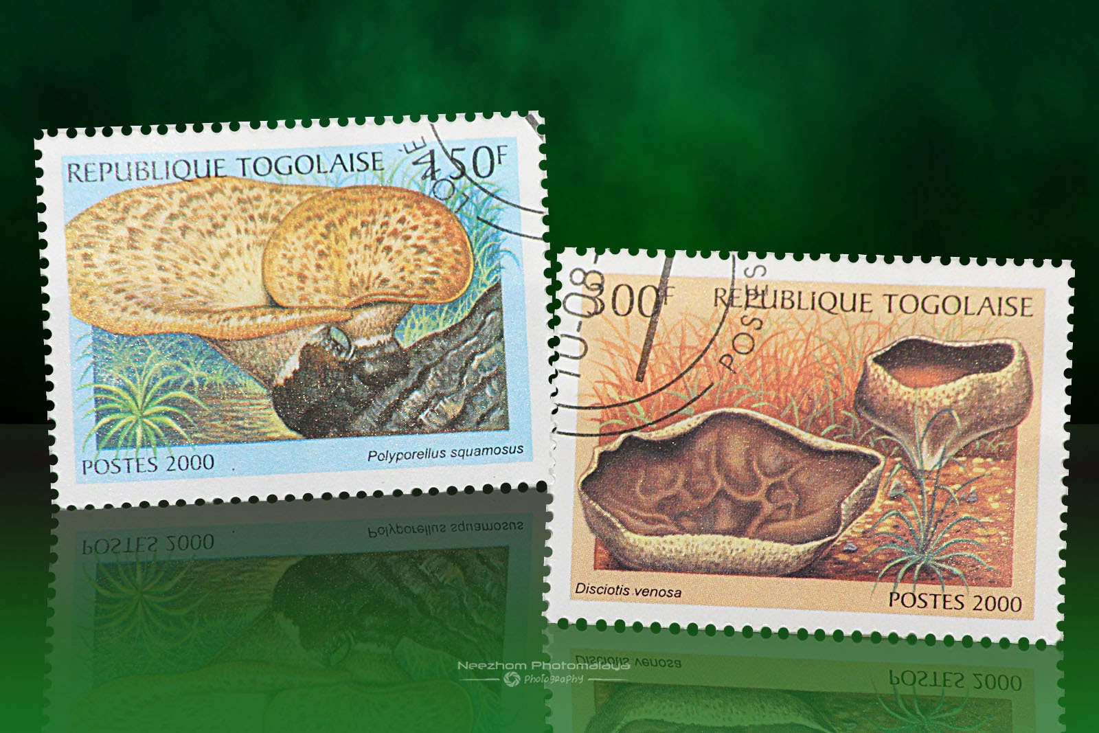 Togolese Republic mushrooms stamps 2000