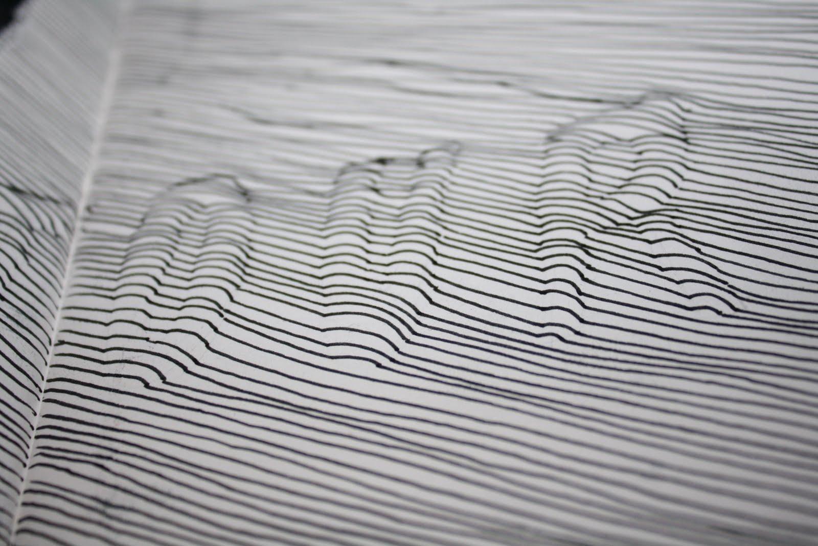 Types Of Contour Line Drawing : Design practice contour type