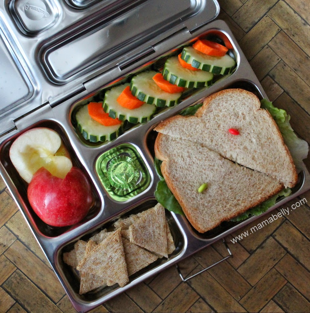 Fun School Lunches in our Planetbox Rover - mamabelly.com