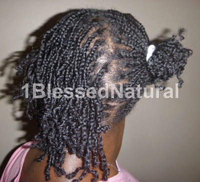 Copyright 2015-1BlessedNatural Mini Twists, Half Up and Half Down