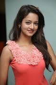 Cute Shanvi Glamorous Photos Gallery-thumbnail-19