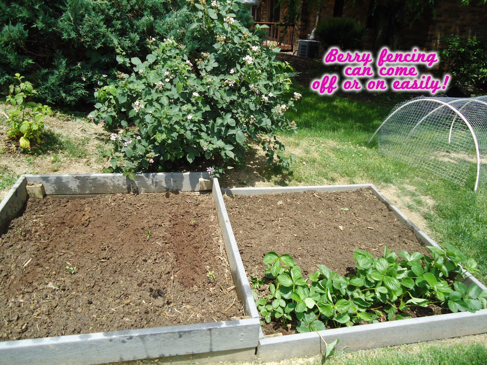 organic gardening and vermicompost
