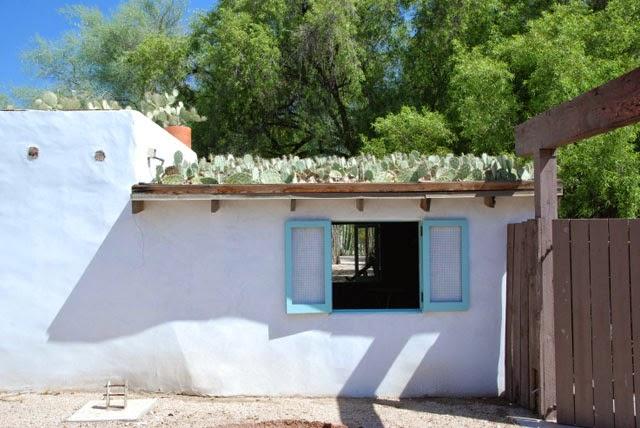 tejado vegetal