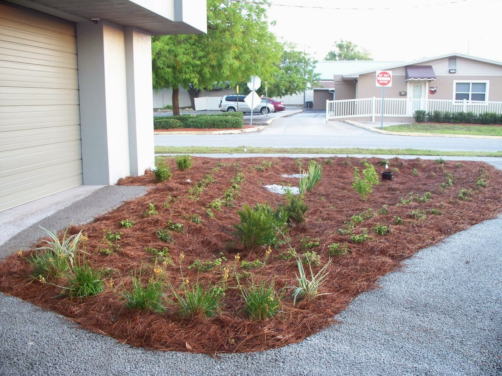 UF IFAS Extension Polk Gardening Mulches For Central Florida