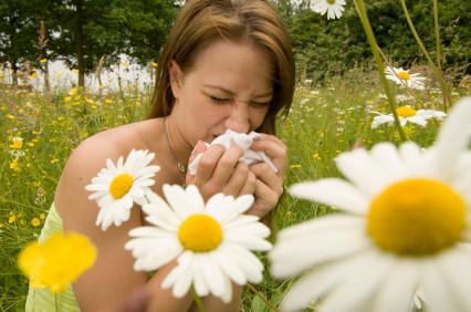 общий анализ на аллергию ige