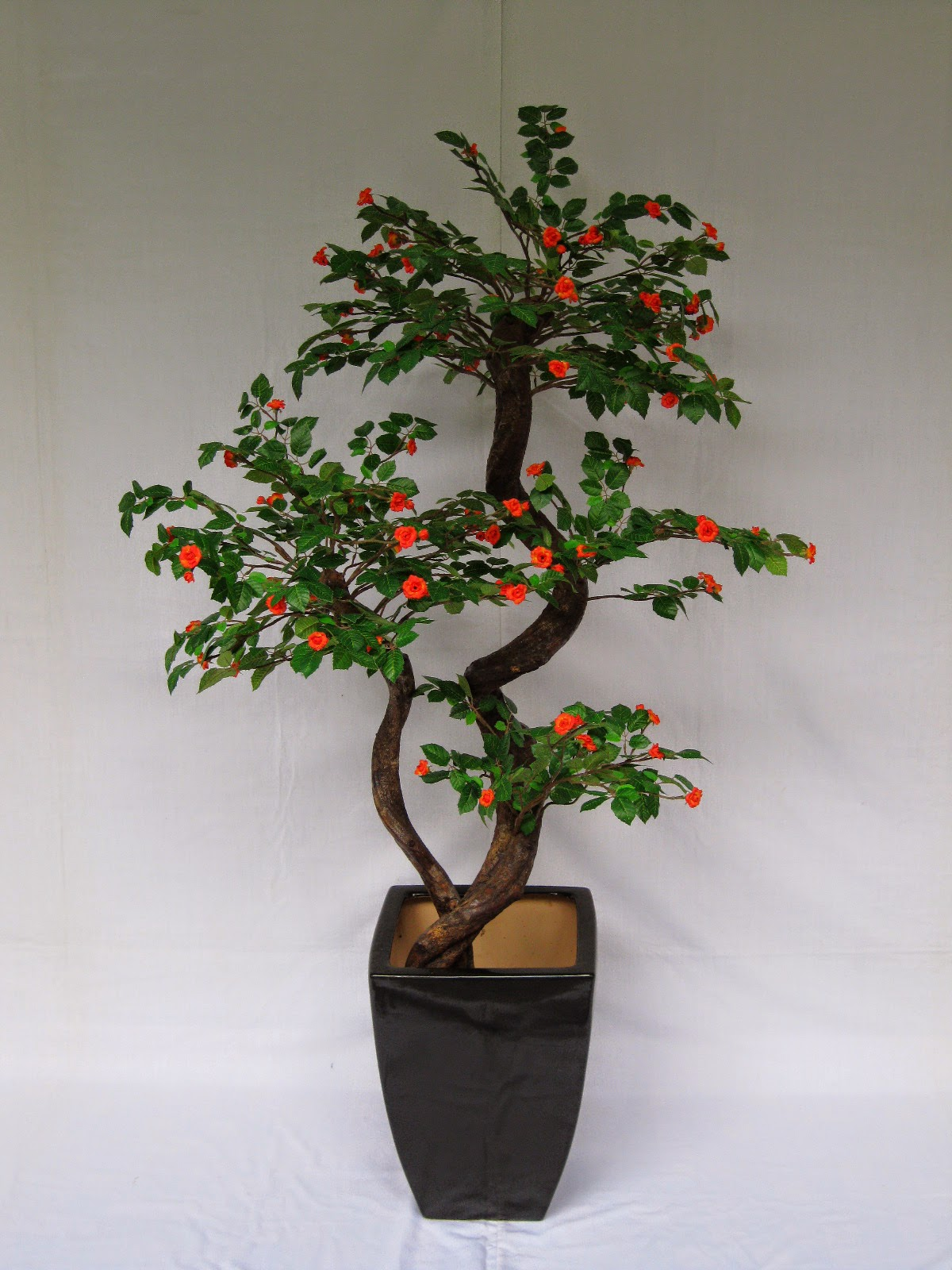 Hoi Kee Flower Shop 5ft New Bonsai Mini RoseO Tree