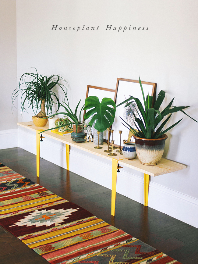 Houseplant Happiness: Bringing Life to the Indoors (via Bubby and Bean)
