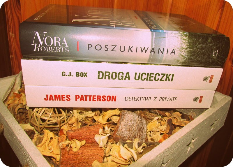 Zimowy festiwal książek w Biedronce i moje zdobycze