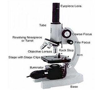 Biologi topi biru: tentang mikroskop