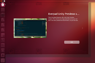 everpad unity dash preview
