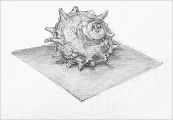 横浜美術学院の中学生教室 美術クラブ どこまで描けるか!「細密デッサン」完成作品5