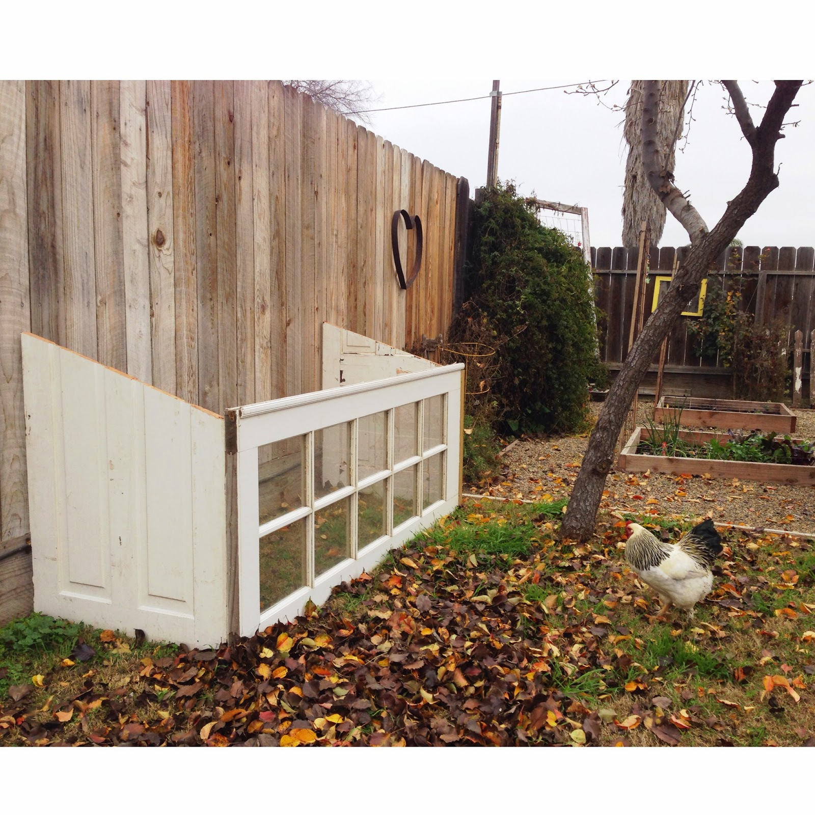 The Baeza Blog  sc 1 st  The Baeza Blog - Blogger & The Baeza Blog: Upcycled Greenhouse From Old Windows and Doors.