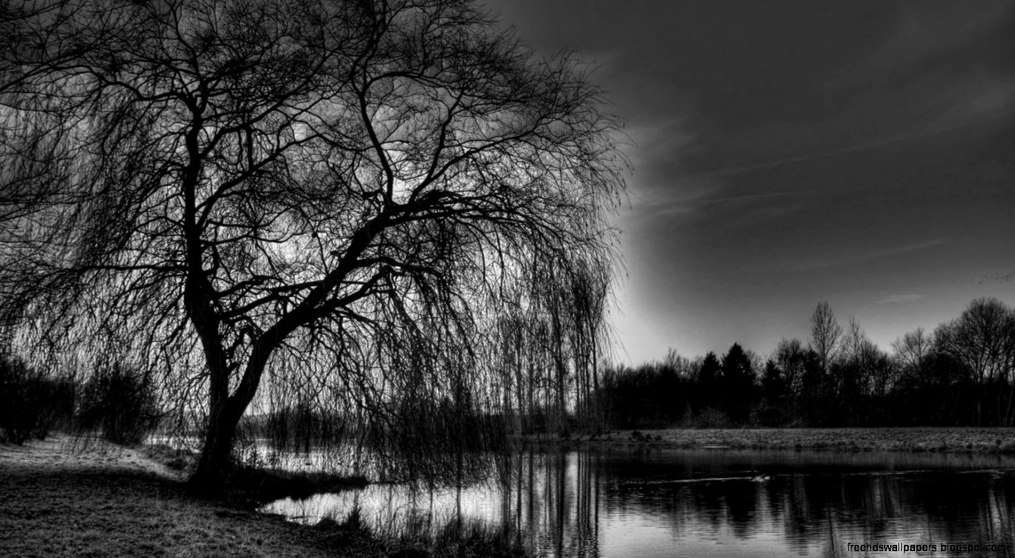 Black and white hd wallpapers free hd wallpapers view original size voltagebd Image collections