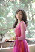 Vithika Sheru Photos at Prema Ishq Kadhal Success Meet-thumbnail-17