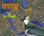 Blízkovýchodní stránky Marka Čejky
