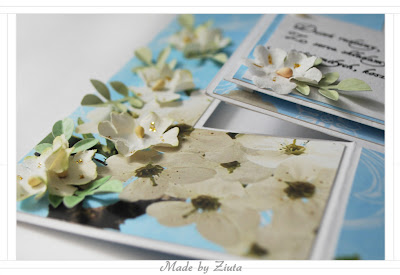 scrapbooking kartka swing