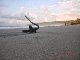Keindahan Pantai Kunir