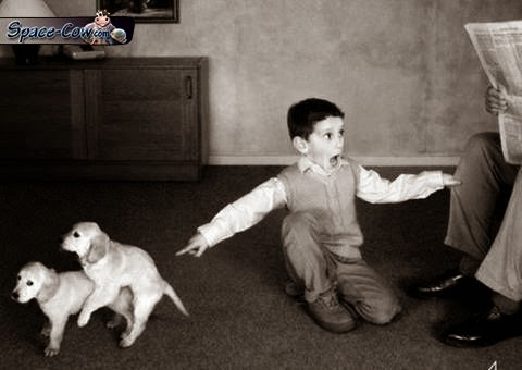 funny pups kid picture