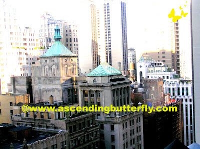 New York City, City Scapes, Views, Urban
