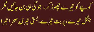 2 Lines Urdu Poetry about pain in love