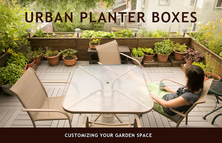 Urban Planter Boxes